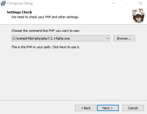 Composer install setup